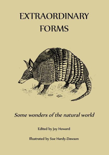 Extraordinary Forms