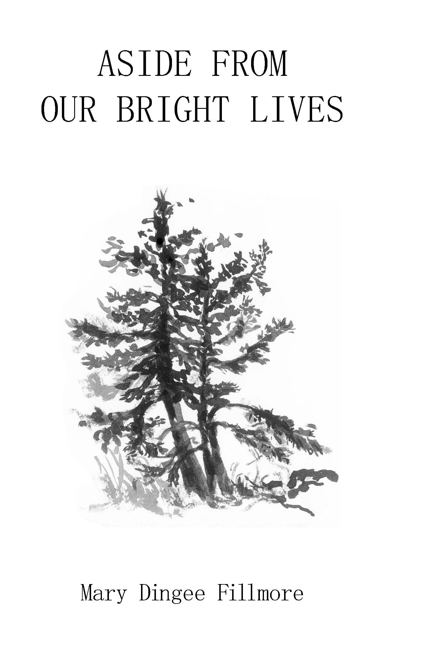 Aside From Our Bright Lives